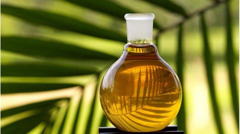 Simondsijų aliejus minkština plaukų struktūrą