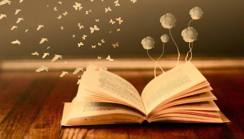Knygos turinys sapne
