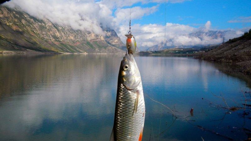 Samenzwering om te vissen