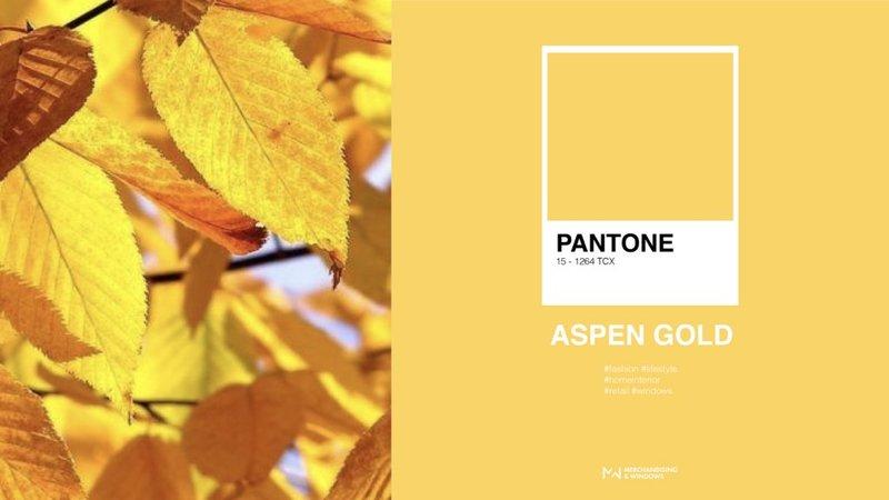 Kleur Aspen Gold
