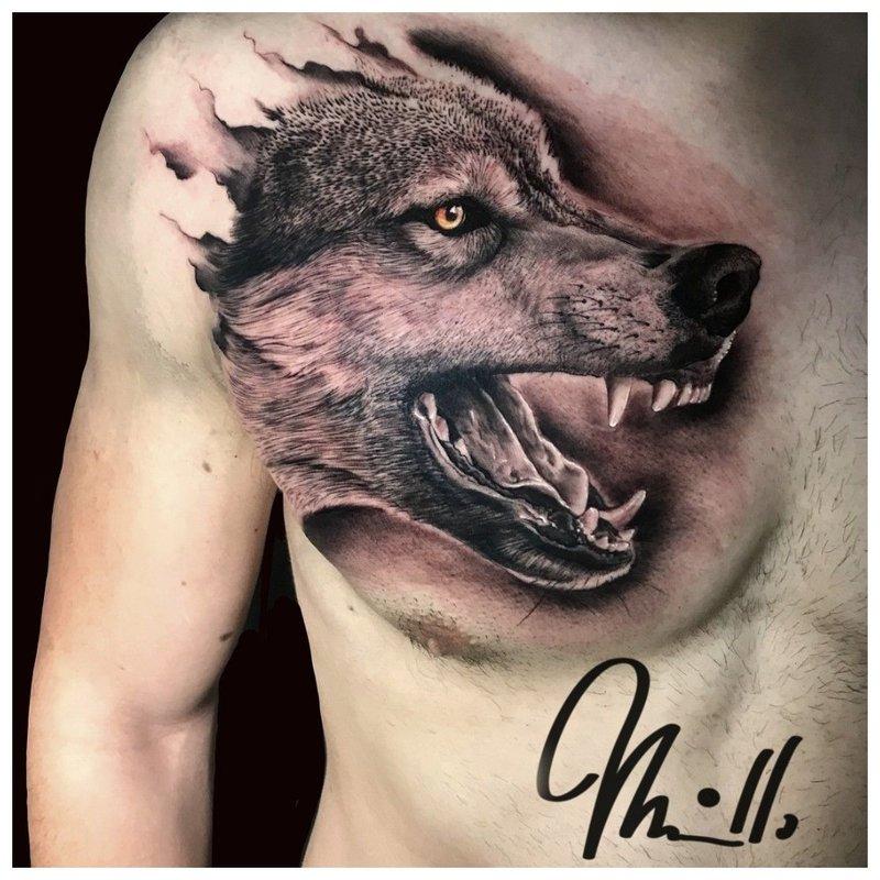 Grijns van een wolf - tatoeage op de borst van een man