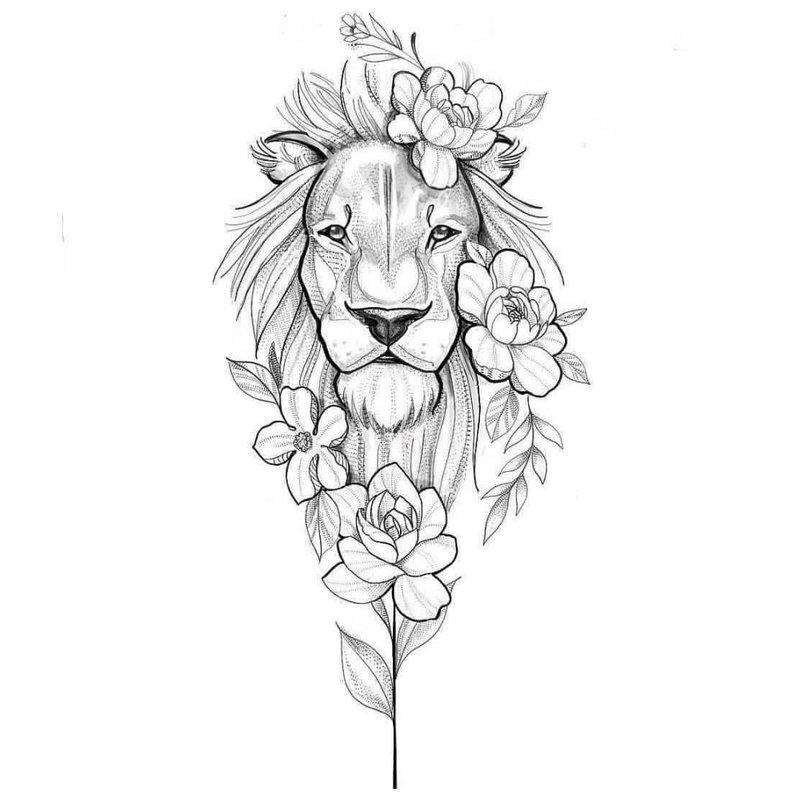 Didelis liūto eskizas