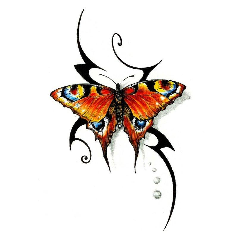 Spalvų eskizas Ryškus drugelis