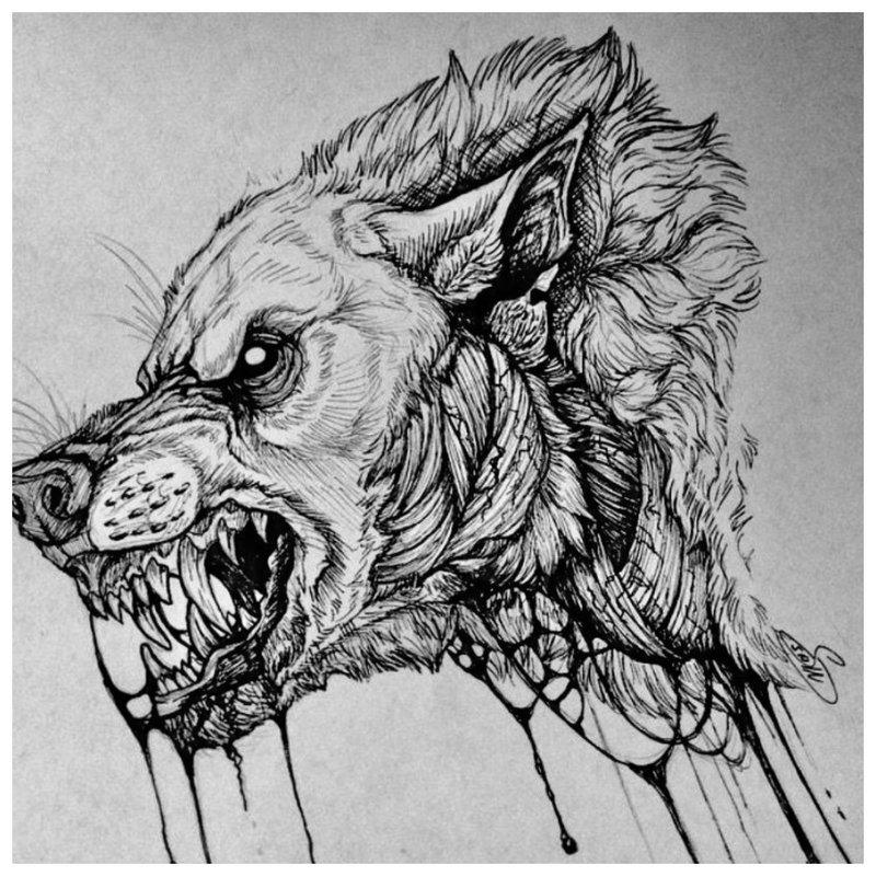 Wolf's mond - schets voor tattoo