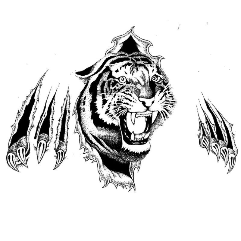 3D tigras su letenų žymėmis