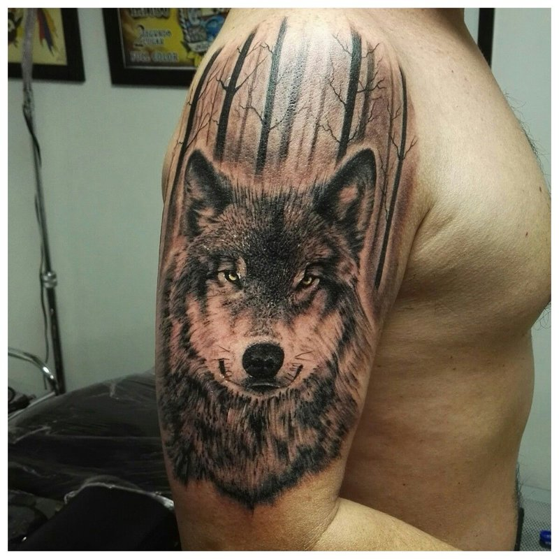 Wolf's Eye - Tattoo