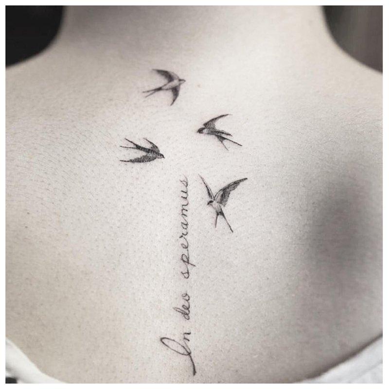 Tatuiruotės užrašas su paukščiais
