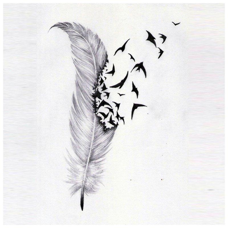 Plunksna - gražus tatuiruotės eskizas
