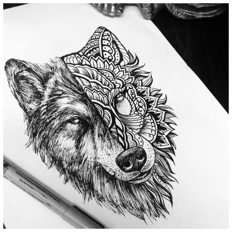 Schets van een wolf in verschillende stijlen