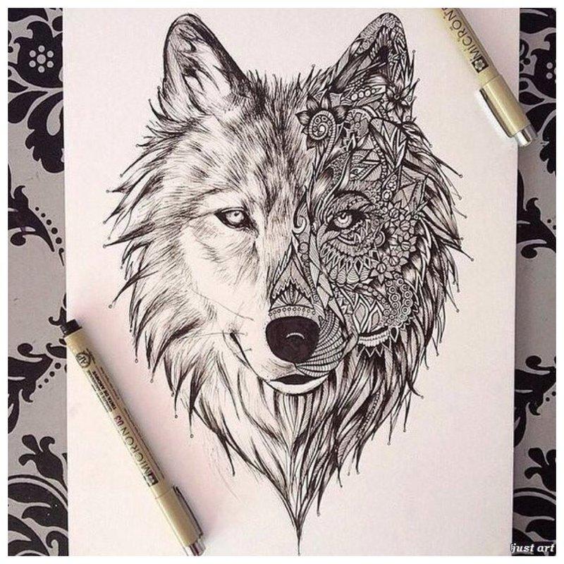 Wolf gezicht - schets voor tattoo