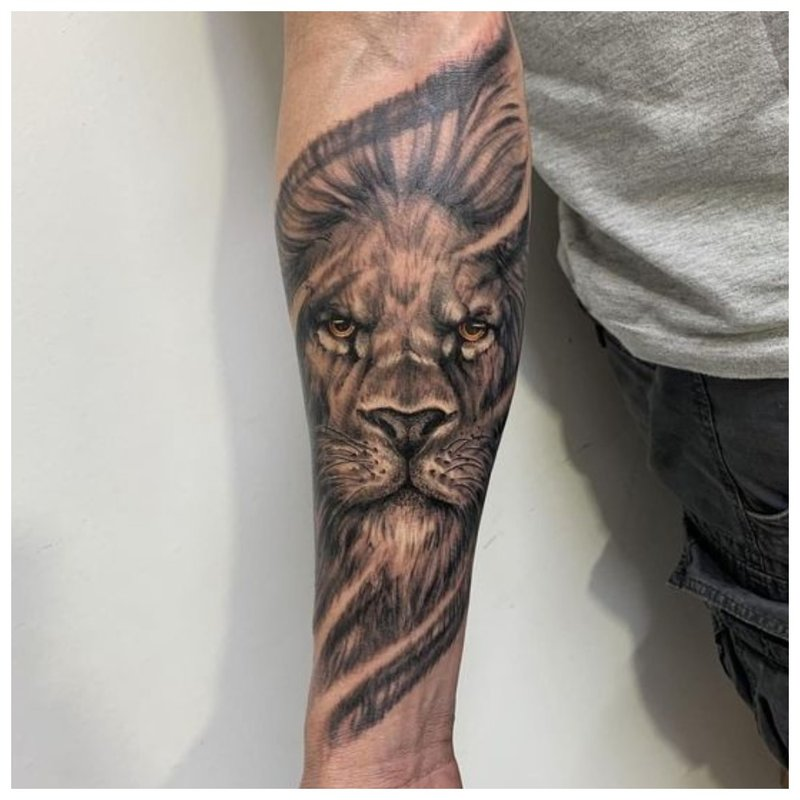 Liūtas - tatuiruotė ant vyro rankos