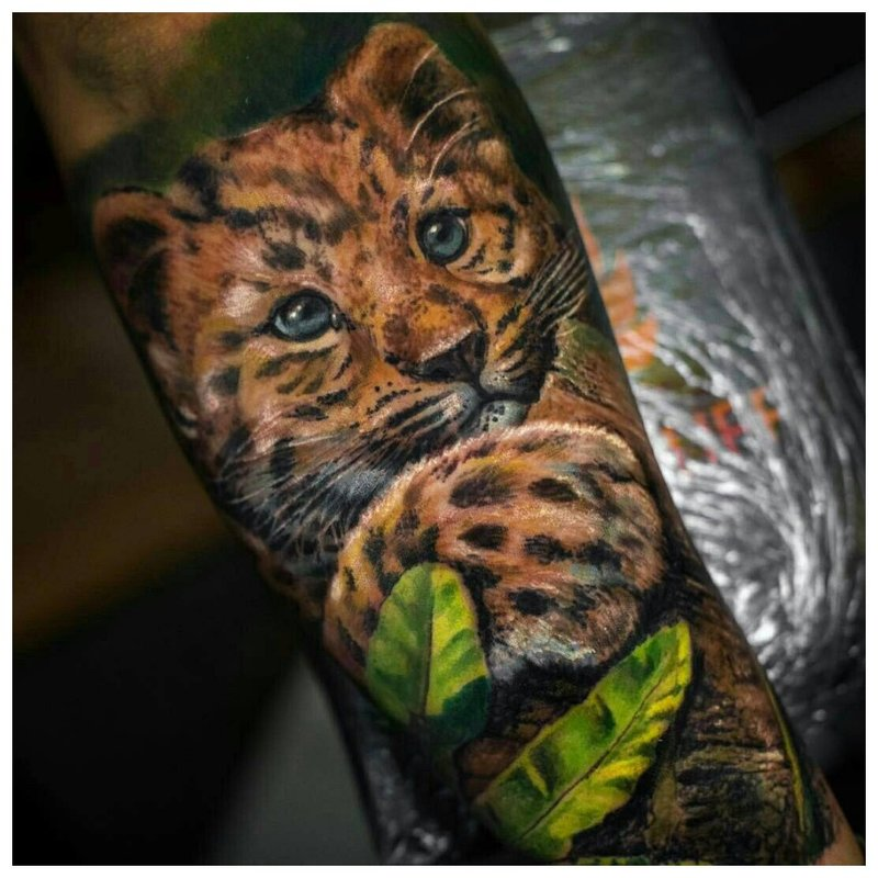 Realisme Cheetah