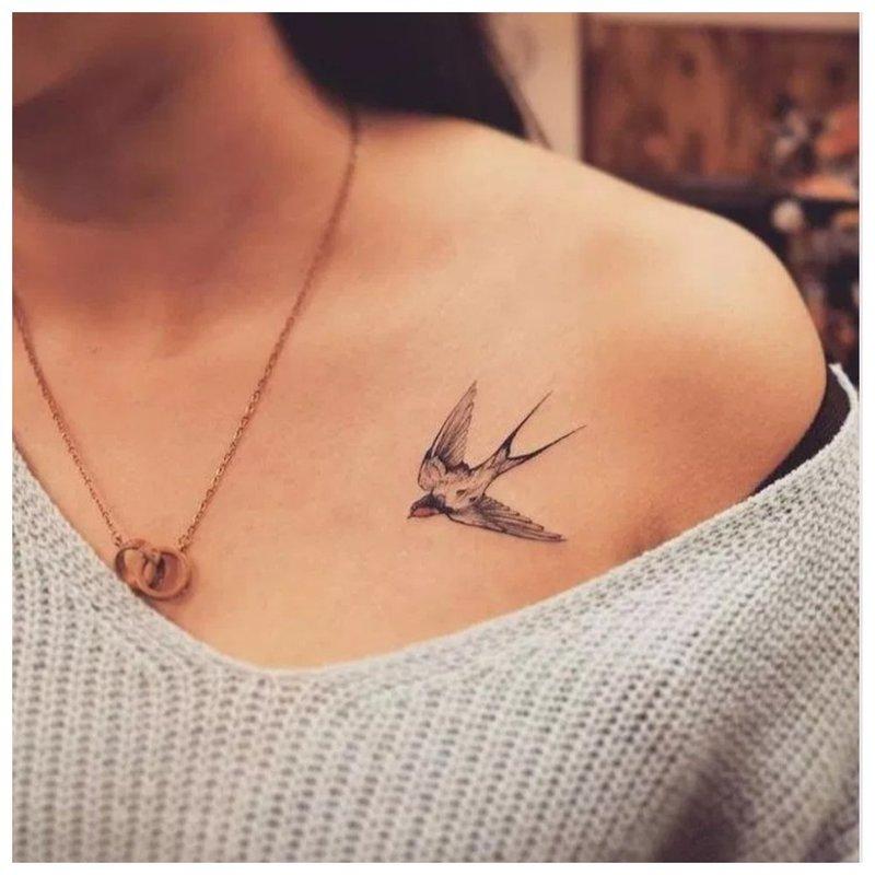 Konkurso paukščio apykaklės tatuiruotė