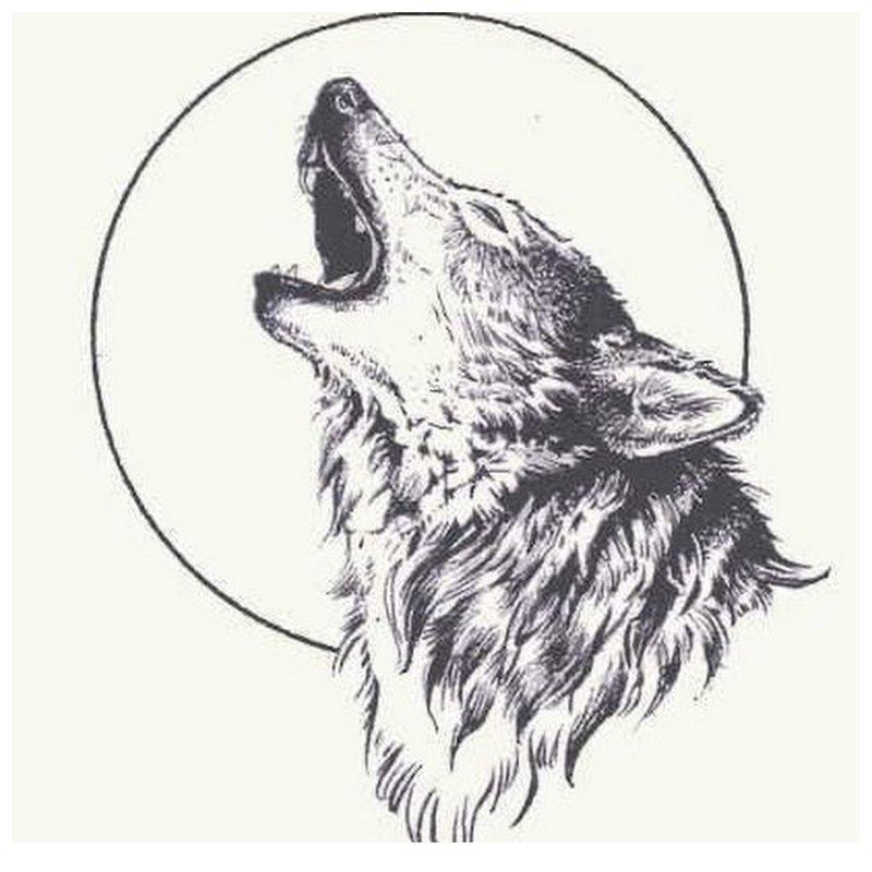 Wolf huilt naar de maan - schets voor tattoo