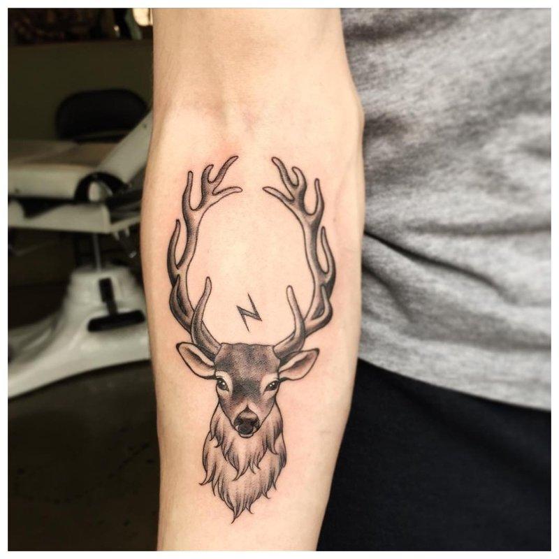 Gyvūnų tematikos tatuiruotė ant dilbio