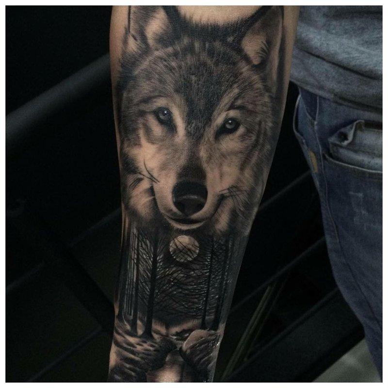 Wolfs gezicht - tatoeage op de arm van een man
