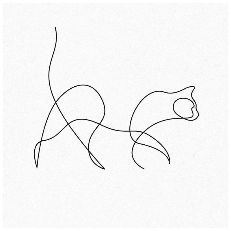 Katės kontūro tatuiruotės eskizas