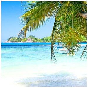 Kelionė saloje