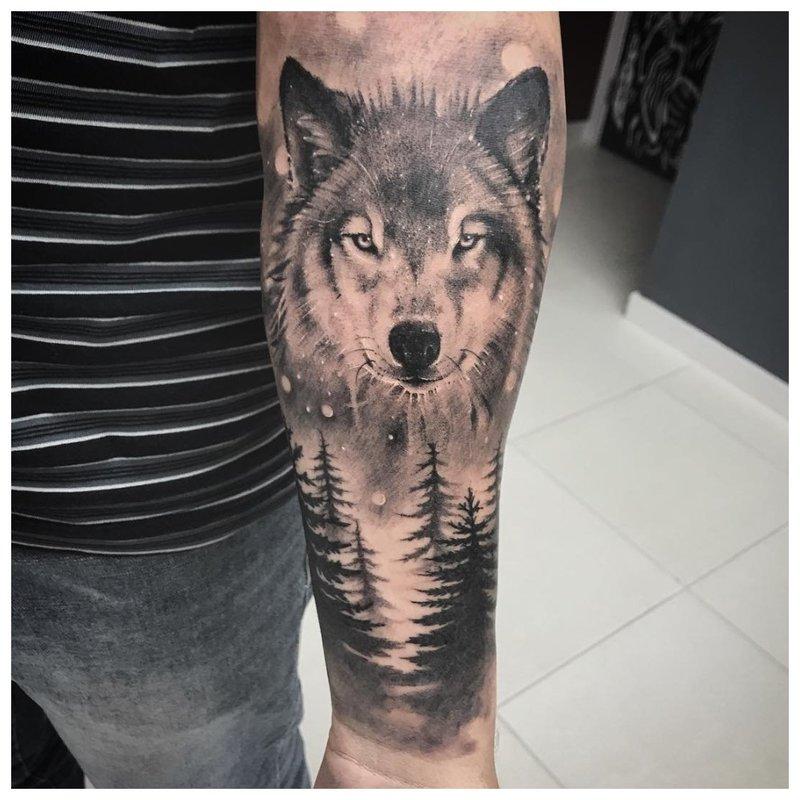 Wolf in het bos - tatoeage op de arm van een man