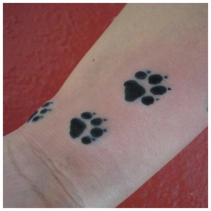 Gyvūno tatuiruotės kojos