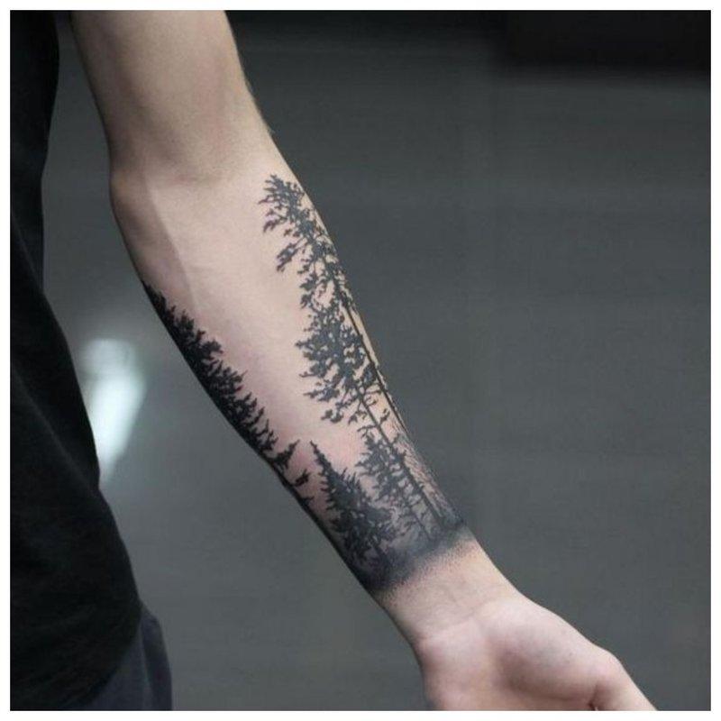 Tatuiruotės kraštovaizdžio vyras ant rankos