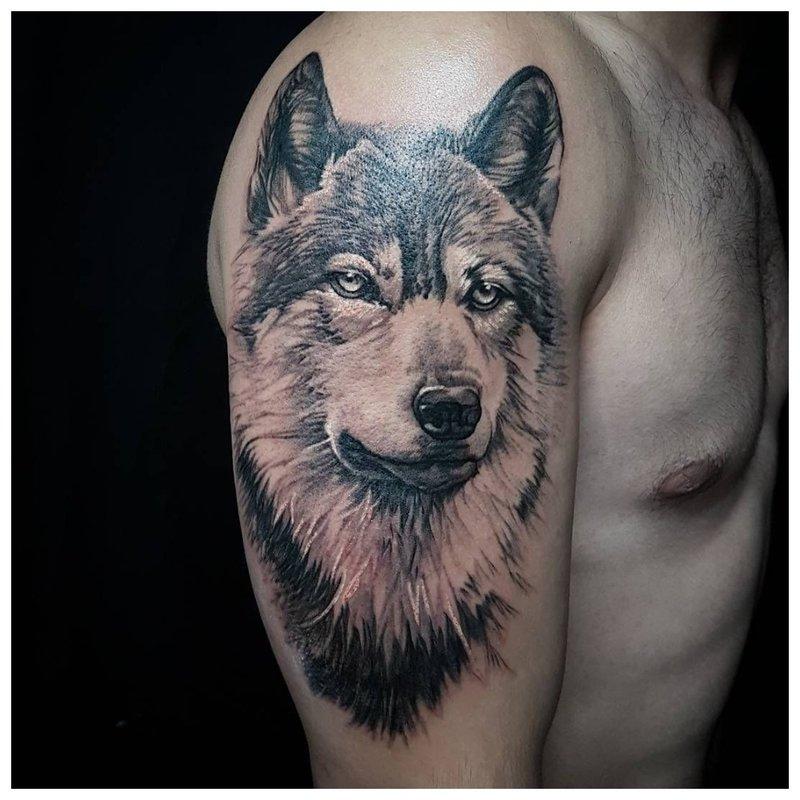 Volwassen wolf - tatoeage op de schouder van een man