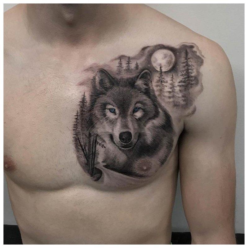 Kalme wolf - tatoeage op de borst van een man
