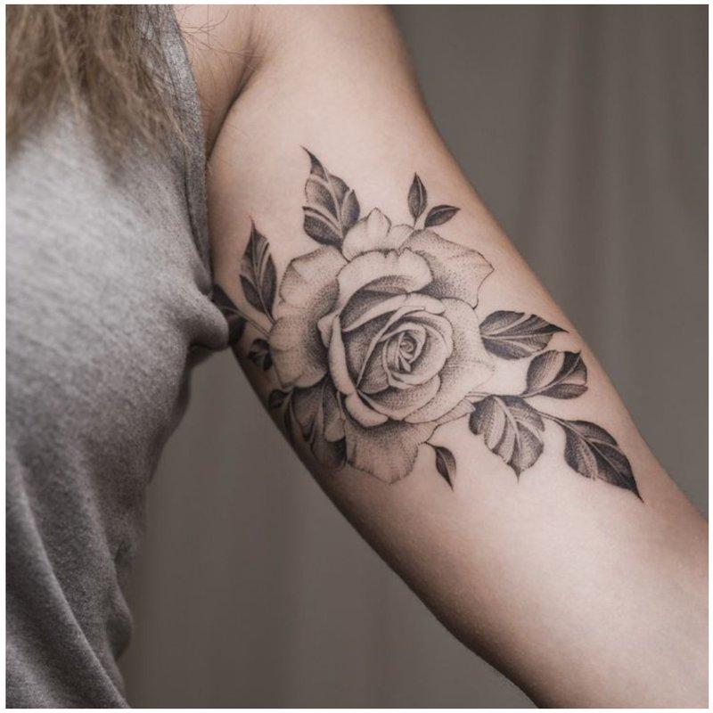 Rožė dilbio vidinėje pusėje