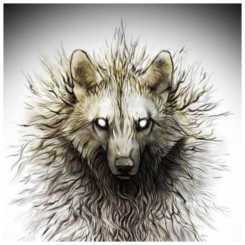 Enge wolf - schets voor tattoo