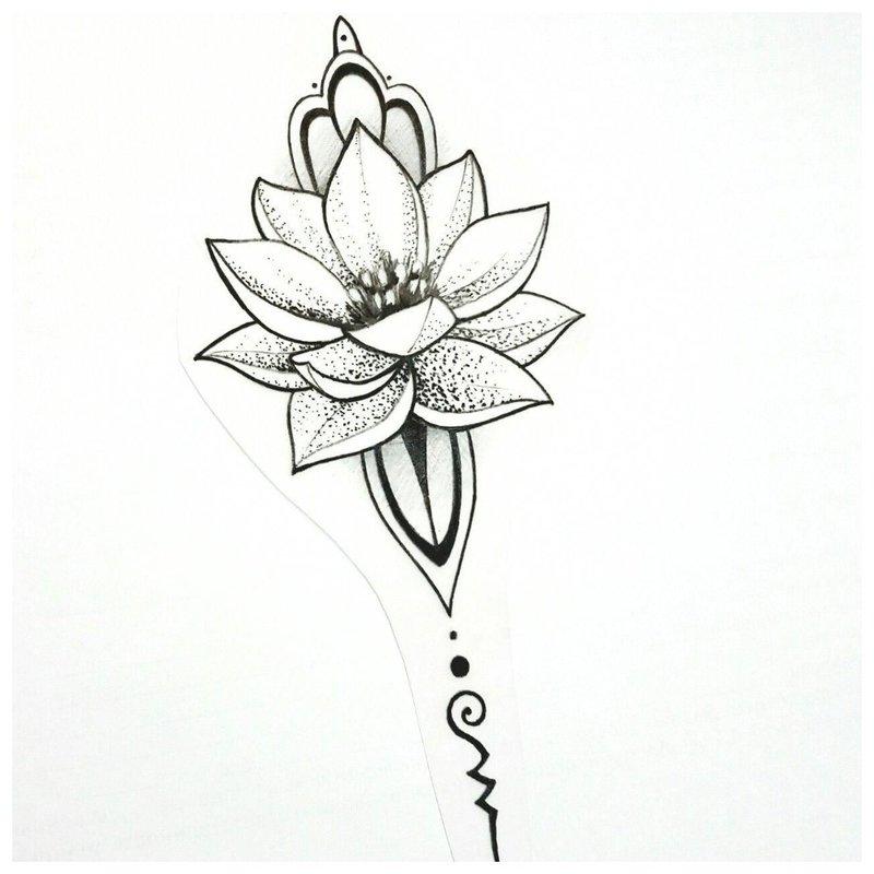 Iš arti eskizinis lotosas