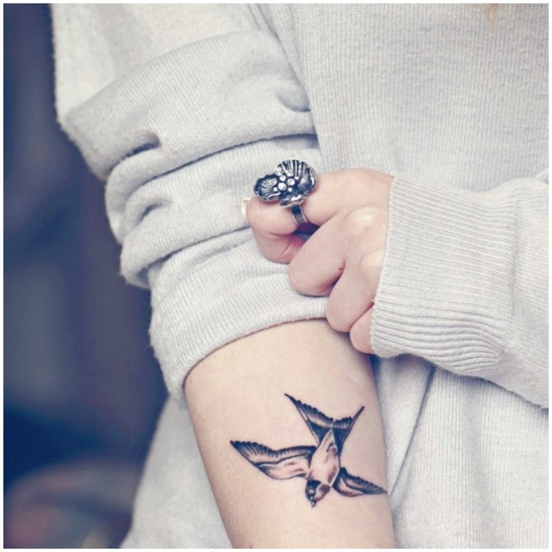 Mini paukštis ant rankos