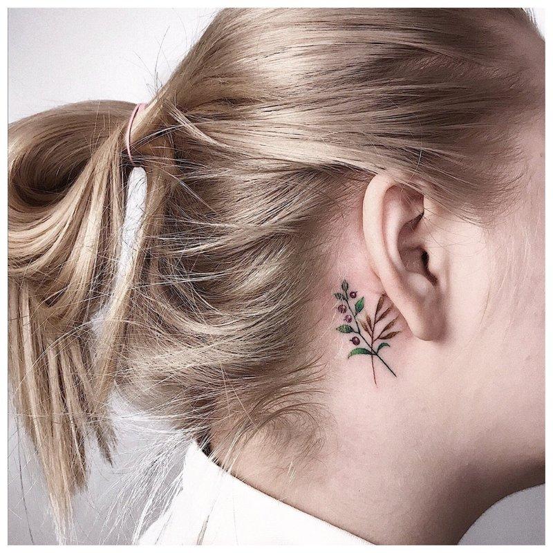Tatuiruotė už ausies