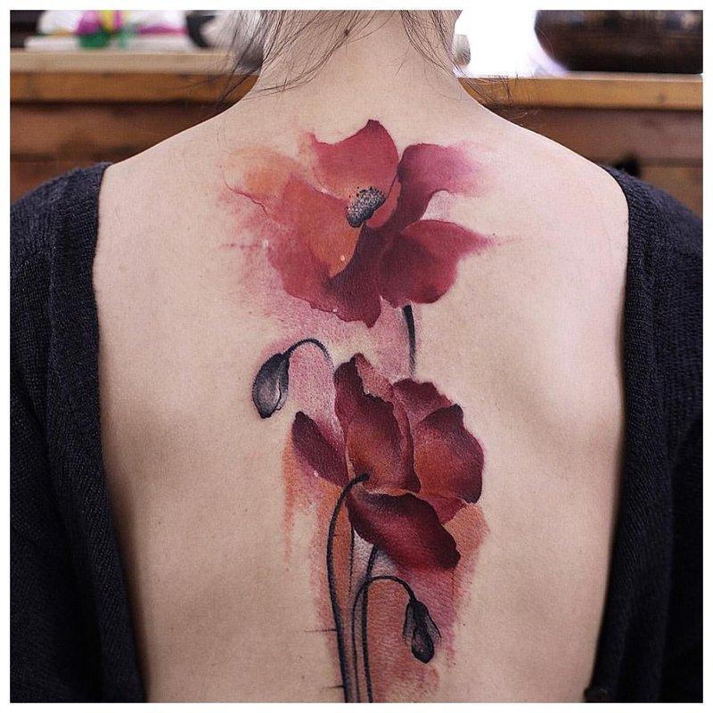 Tatuiruotė akvarelėje ant aguonų