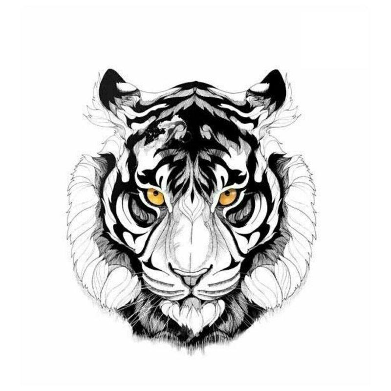 Lion schets voor tattoo