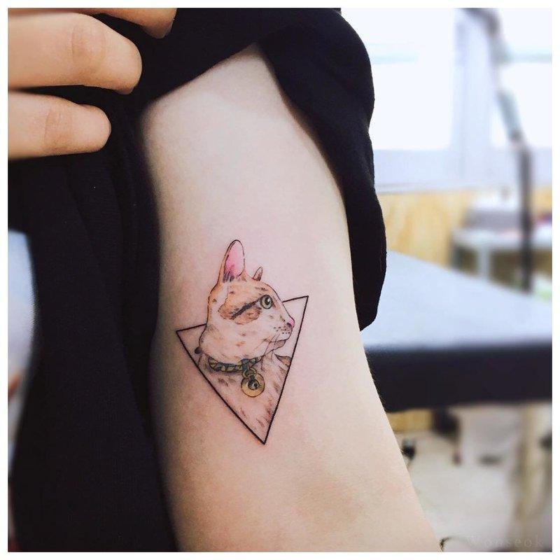 Trikampio katės tatuiruotė