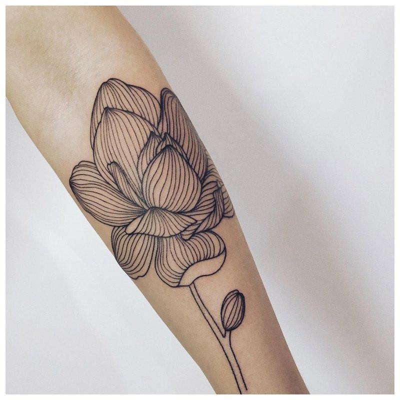 Gėlių linija